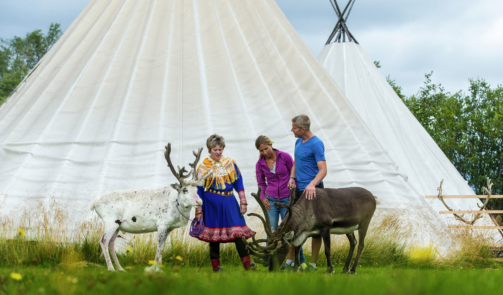 Tourists visiting sami people with reindeer and lavvos (tents) in Alta, Finnmark.