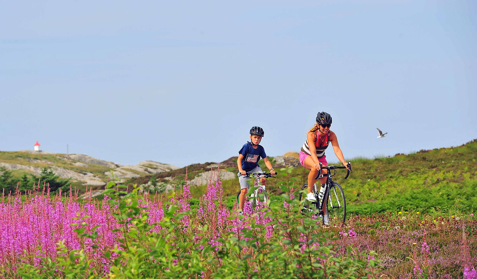 Cyclists among flowers and hills.