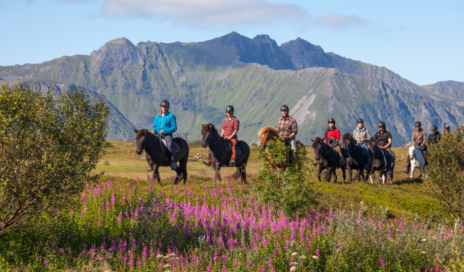 Horseback riding in autumn colors in Lofoten.
