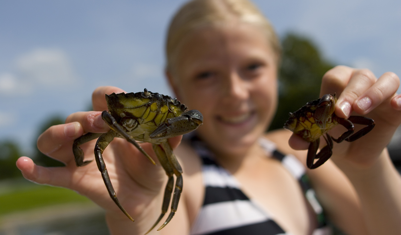 Girl with two small crabs in her hands.