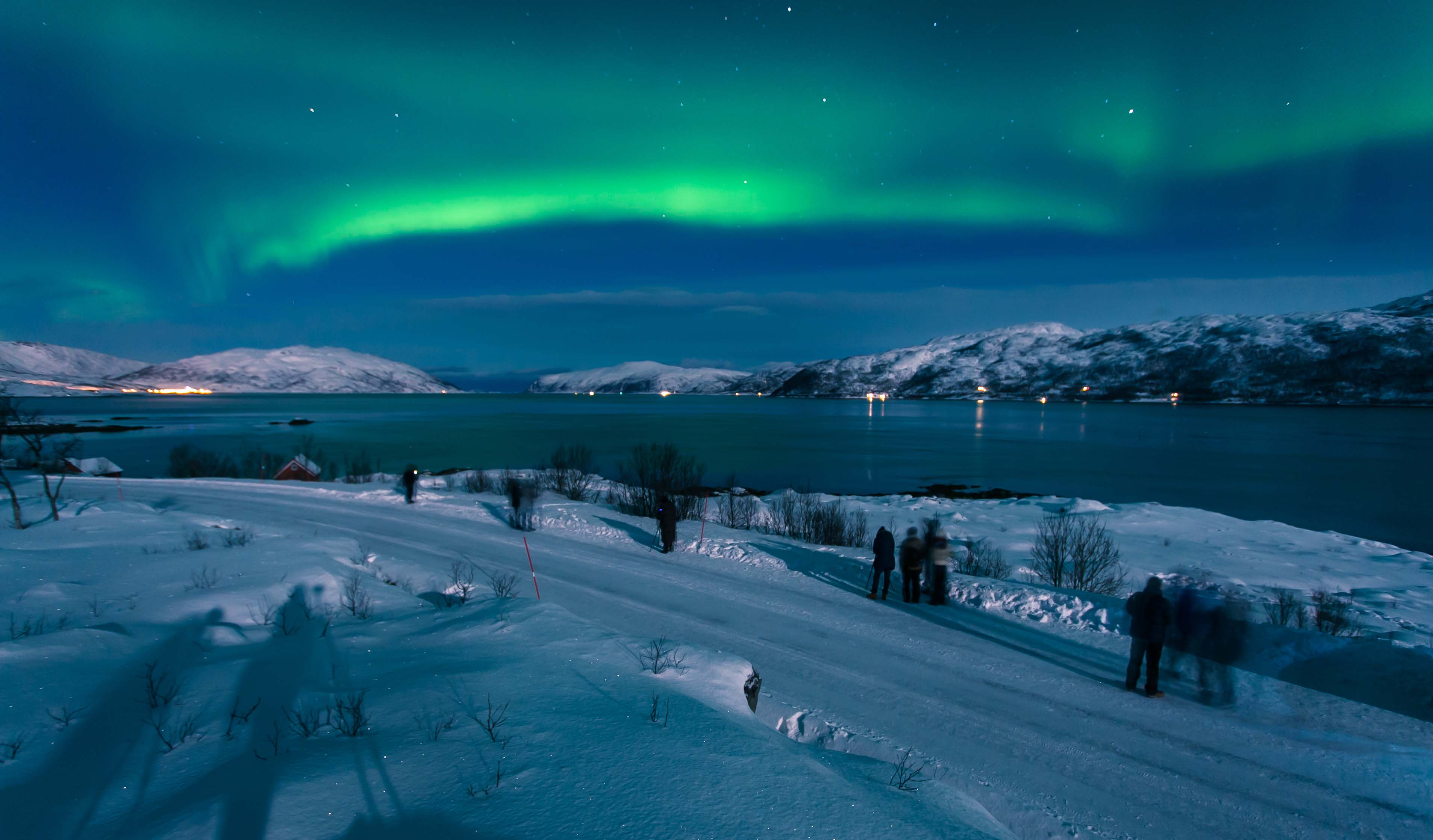 A group of people enjoying the magnificent northern lights from Laksvatn, Troms.